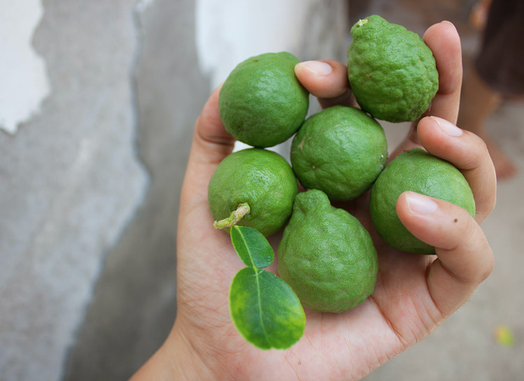 limes with bumpy skin